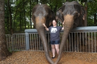 Adult Elephant Expedition