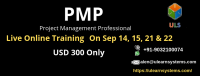 PMP Live online Certification Training Course | PMP Training | Ulearn Systems