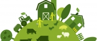 December Offer! Agricultural Value Chain Development and Market Linkages Course