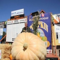 Half Moon Bay's 46th Safeway World Championship Pumpkin Weigh-Off