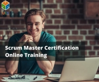 Professional Scrum Master (PSM) Training    PSM Online training