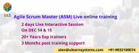 Agile Scrum Master Live online Certification Training Course