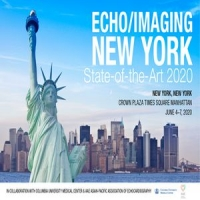 Echo/Imaging New York – State-of-the-Art 2020