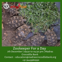 Zookeeper For A Day - Entryeticket