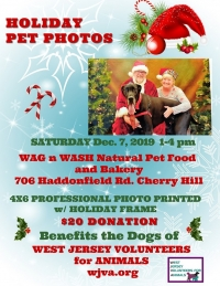 Holiday Pet Photos with Santa