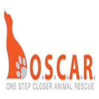 O.S.C.A.R. Fundraiser and Holiday Shoppe