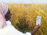 Climate Smart Agricultural Technologies Innovations and Management Practices in Developing Countries