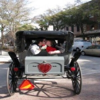Romantic Valentine Carriage Ride