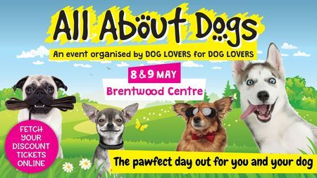All About Dogs Show Essex 2020, Brentwood, United Kingdom