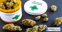 Medical cannabis: 2020 updates on GMP guidelines and regulations