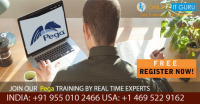 Pega Online Training Hyderabad