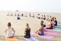 22 Days - 200 Hour Ashtanga Vinyasa & Yin Yoga Teacher Training, India