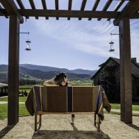 Women's Wellness Retreat in Colorado