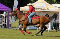 The Essex Country Show