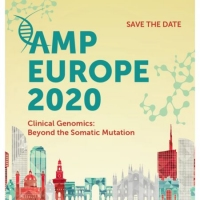 AMP Europe 2020