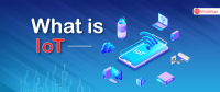 IoT Online Certification Course