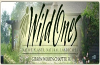 Native Plant Sale, hosted by GW-Wild Ones