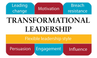 Transformational Leadership and Governance Course