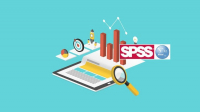 Methodology and Software for Processing and Analyzing surveys and Assessments data (SPSS/Stata/Excel/ODK)