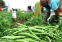Agri-Business, Enterprise Development and Market Linkage Course
