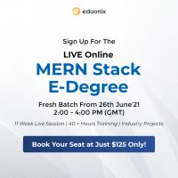 Live Online Training- MERN Stack E-Degree