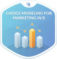 Discrete Choice modeling through theory and practice