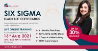 Six Sigma Black Belt Online Course - Skillogic