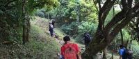 Trekking in Kodachadri